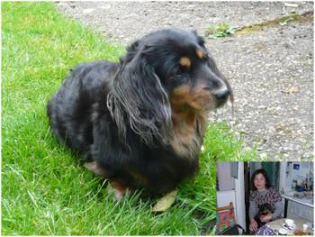 Me_and_pet_dog_2