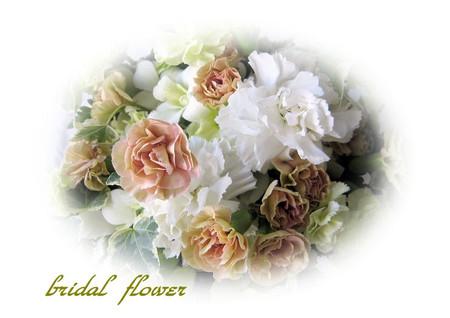 0916bridalflower_2