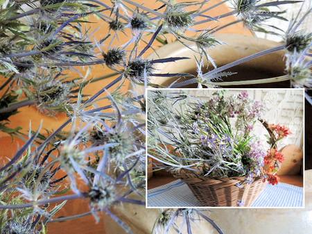 Dried_flower