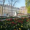 花咲くアミアンの春